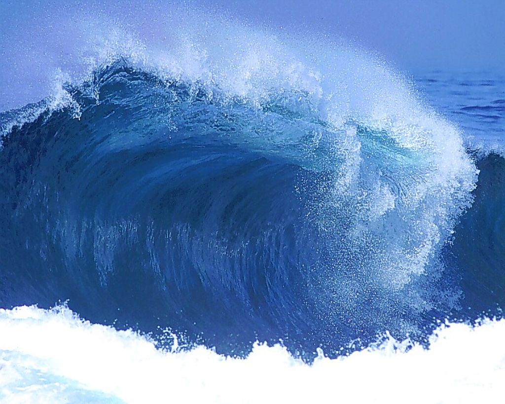 espinose-ocean